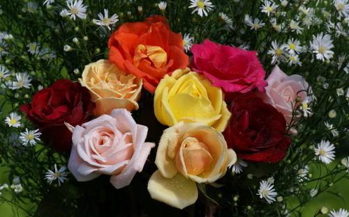 colorful_rose_bouquet